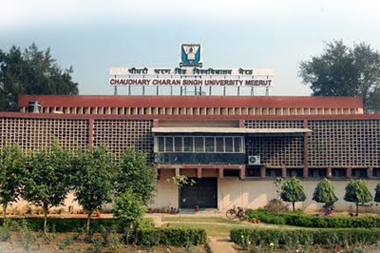 CCS University Meerut Result 2014